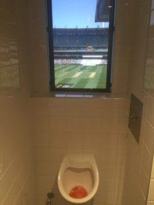 guzel-manzarali-wc-tuvalet-11