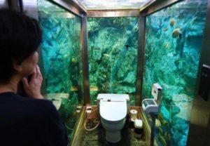 guzel-manzarali-wc-tuvalet-9