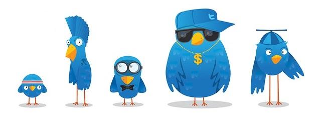 twitter-takipcileri