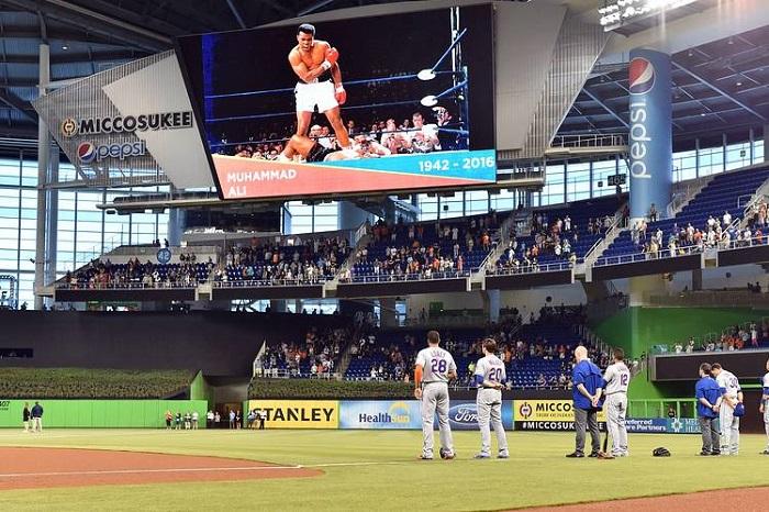 Miami-Marlins-beyzbol-takımı