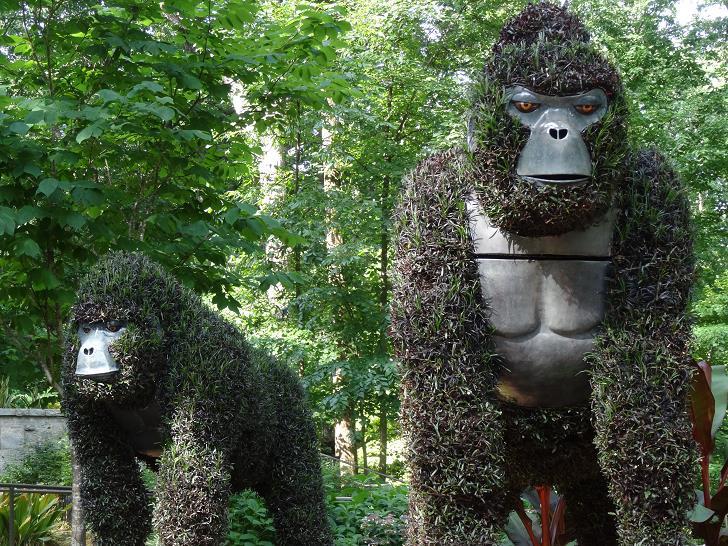 bitki-heykel-goril