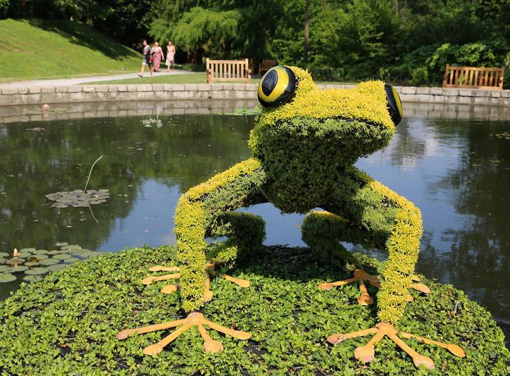 bitki-heykel-kurbaga