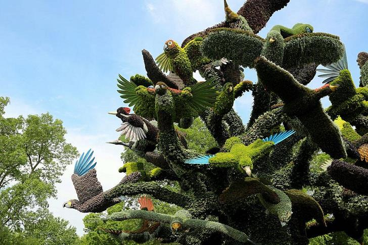 bitki-heykeller-kuslar