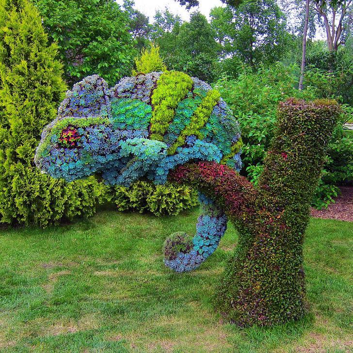 bitki-heykelleri-bukalemun