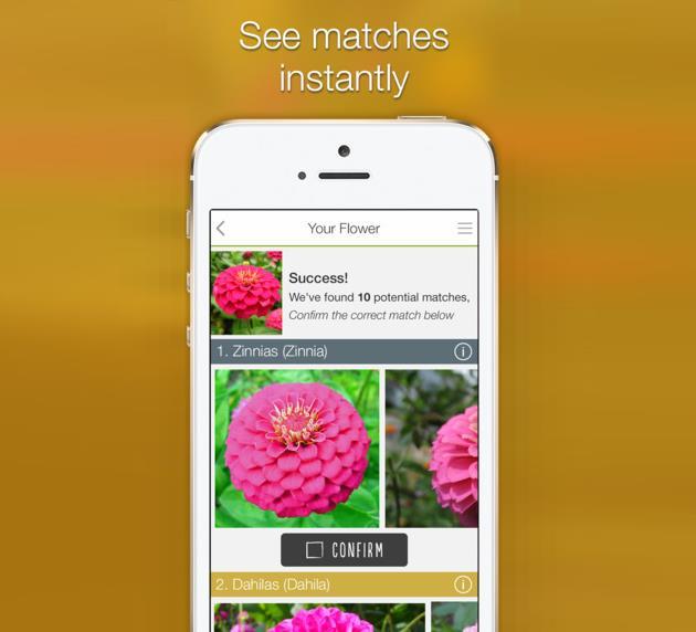 bitki-ile-benzerlik-gosteren-diger-bitkiler-LikeThat-Garden-Uygulamasi