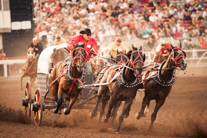 calgary-stampede-canada