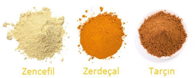 zencefil-zerdecal-tarcin-14
