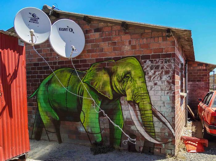 Güney-Afrika-Sokaklarına-Hükmeden-Fil-Sanatı-11