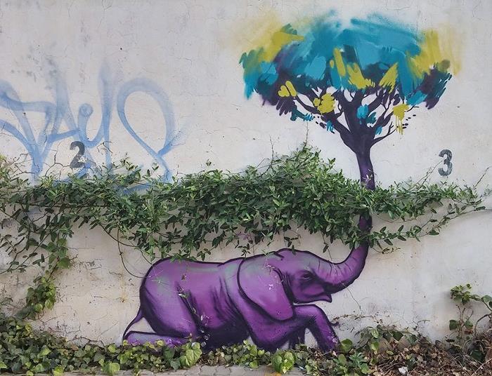 Güney-Afrika-Sokaklarına-Hükmeden-Fil-Sanatı-3
