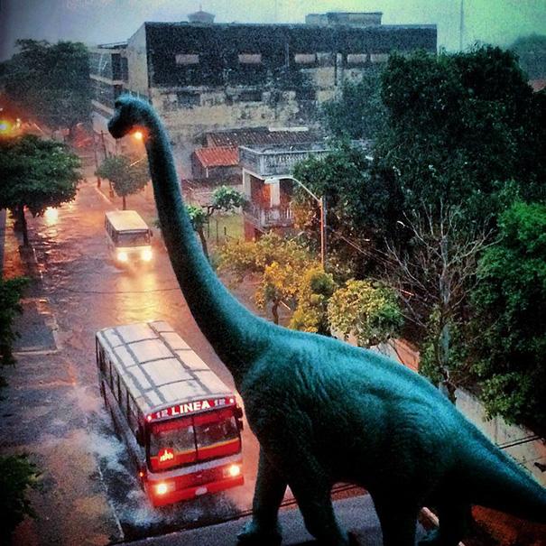 Gezi-Fotoğrafçılık-Oyuncaklar-Dinozorlar-Jorge-Saenz (14)