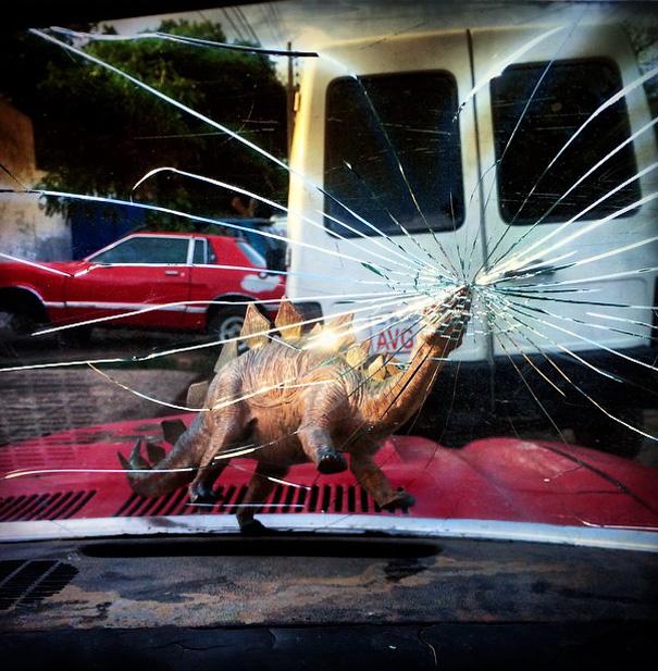 Gezi-Fotoğrafçılık-Oyuncaklar-Dinozorlar-Jorge-Saenz (15)