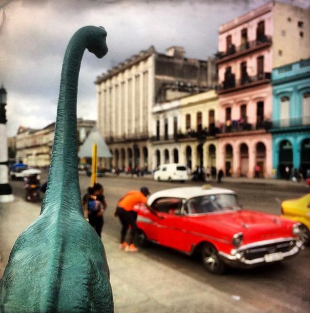 Gezi-Fotoğrafçılık-Oyuncaklar-Dinozorlar-Jorge-Saenz (16)