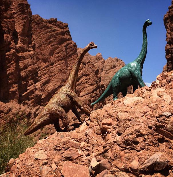 Gezi-Fotoğrafçılık-Oyuncaklar-Dinozorlar-Jorge-Saenz (21)