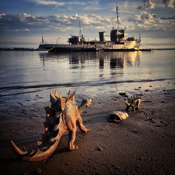 Gezi-Fotoğrafçılık-Oyuncaklar-Dinozorlar-Jorge-Saenz (29)