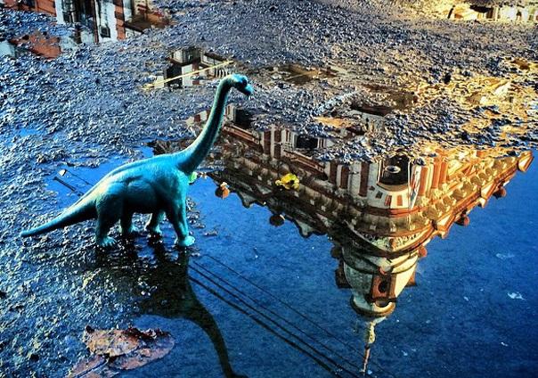 Gezi-Fotoğrafçılık-Oyuncaklar-Dinozorlar-Jorge-Saenz (30)