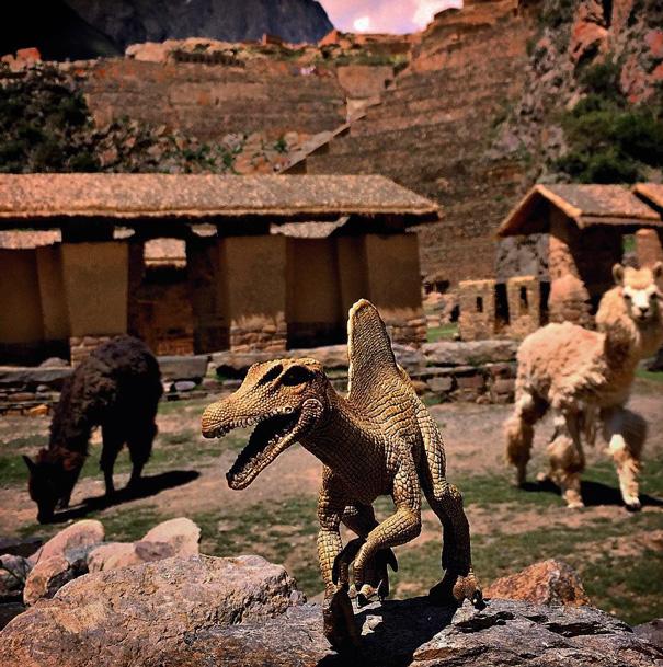 Gezi-Fotoğrafçılık-Oyuncaklar-Dinozorlar-Jorge-Saenz (5)