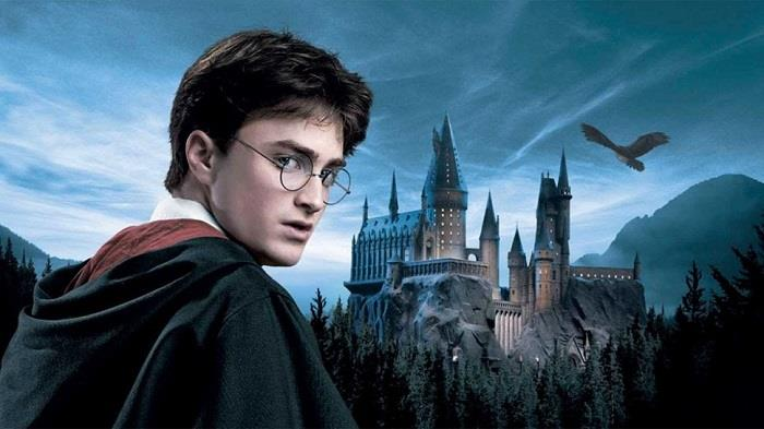 Harry-Potter (8)