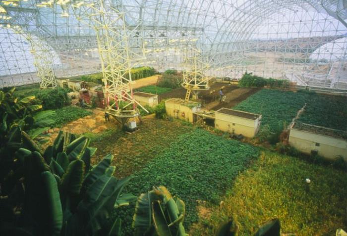 biyosfer-2-projesi-bitki-örtüsü