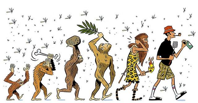 insan-evrimi-sivrisinekler