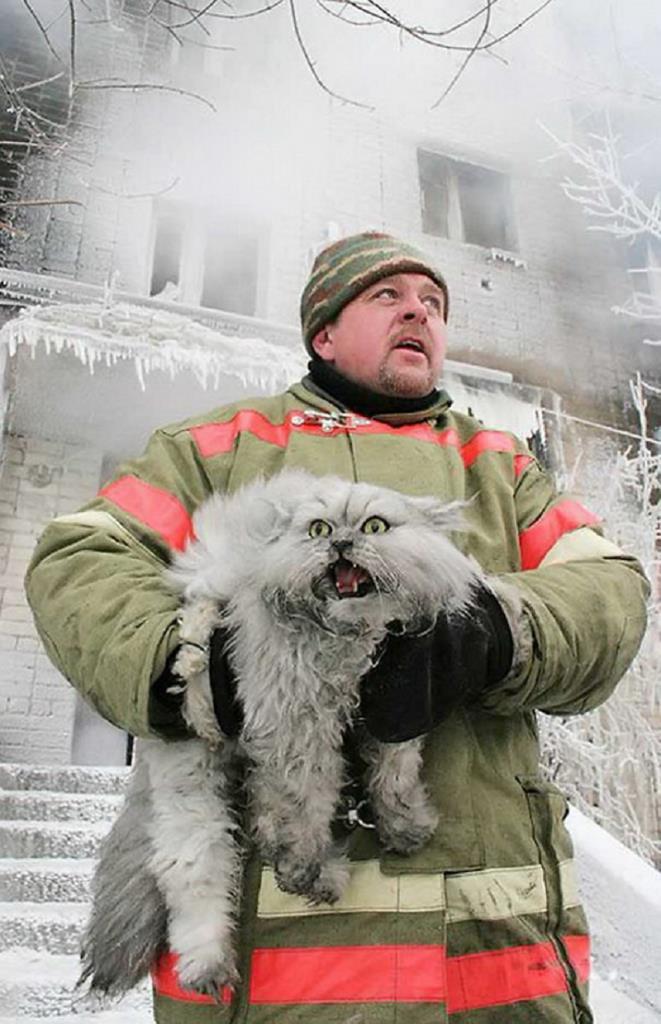 itfaiye-hayat-kurtaran-kedi-kopek-yangin10-661x1024