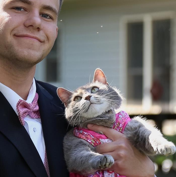 mezuniyet-balosuna-kedisiyle-giden-cocuk-sorbiona-1