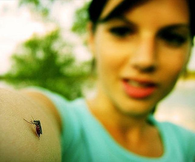 sivrisinek-korunma