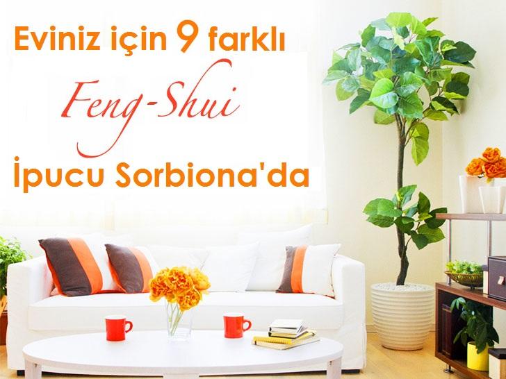feng-shui-ipuclari
