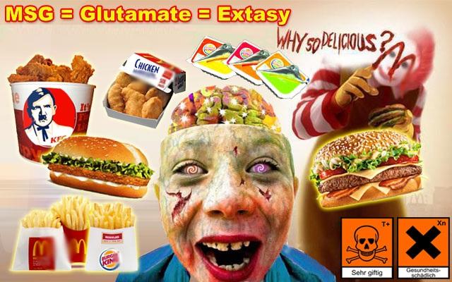 msg-mono-sodium-sodyum-glutamat-glutamate