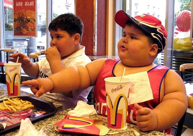 glutamat-obezite