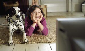 köpekler-televizyon-izleyebilir-mi