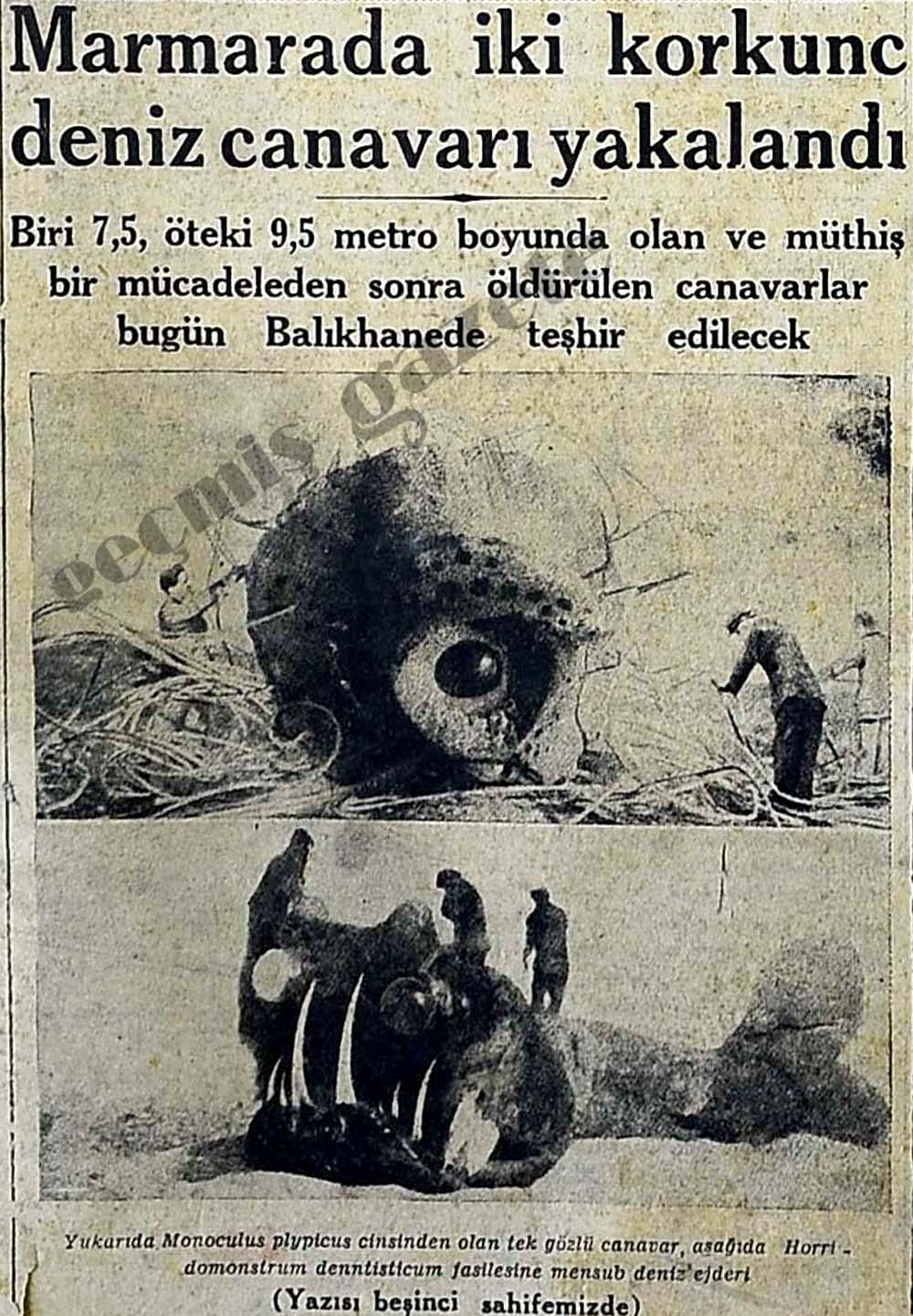 Marmara Canavarı Efsanesi