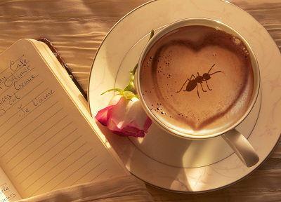 kahve üreten karıncalar