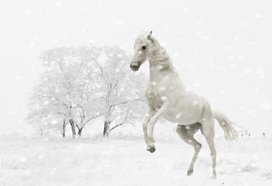 beyaz-rengin-anlami
