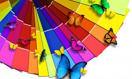 Renklerin Anlamları